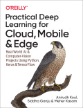 Practical Deep Learning for Cloud, Mobile, and Edge, 1. udgave