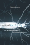 Animal Electricity - How We Learned That the Body and Brain Are Electric Machines